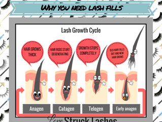 Why you need lash fills