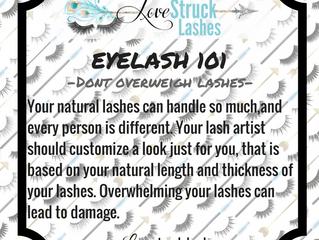Eyelash 101