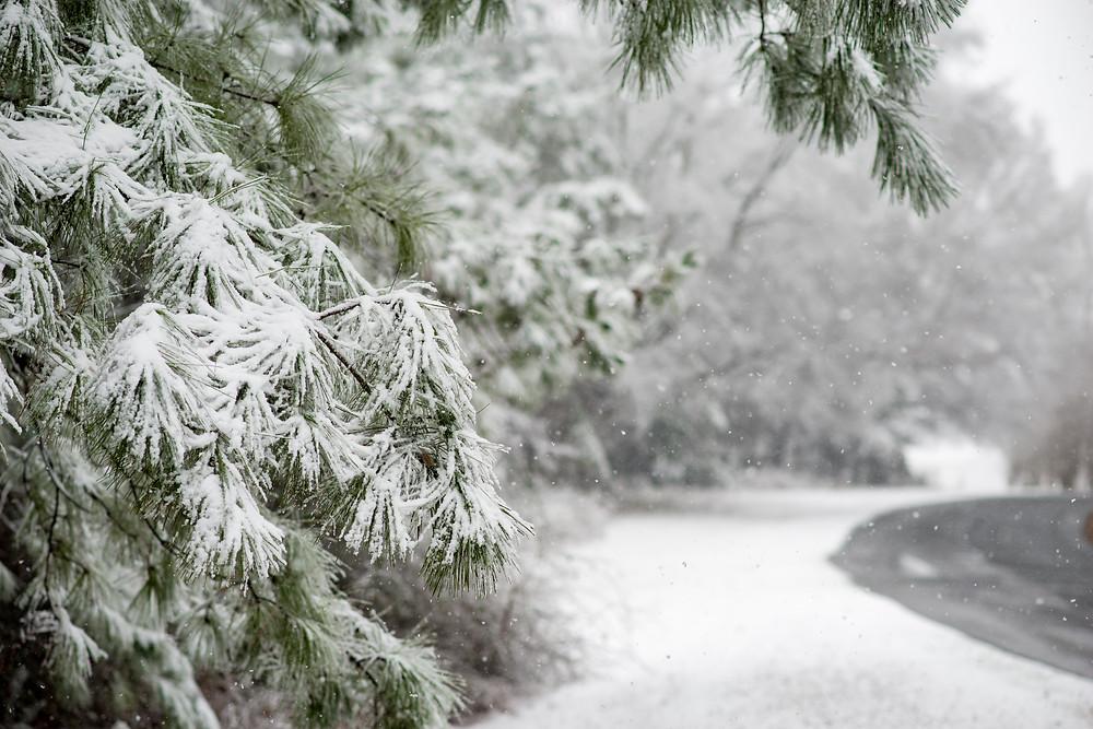 Norwood NC | Landscape Photography | Jennifer Ann Photography