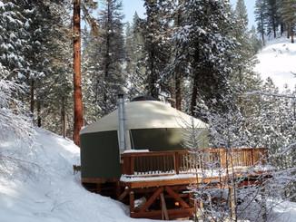 Building a yurt
