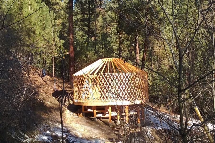The yurt's bones
