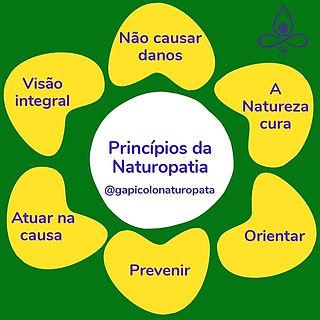 Princípios da naturopatia