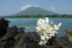 PulauSebesi.jpg
