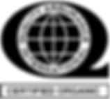 QAI logo.png