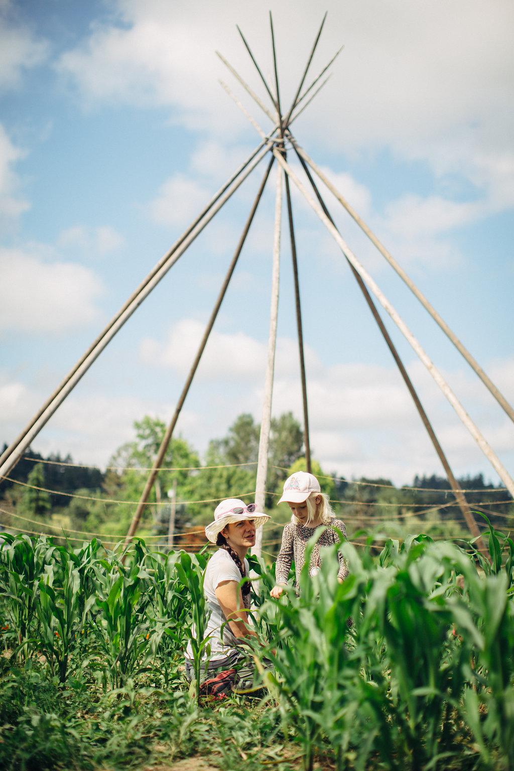 Farm Camp Tipi
