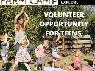Youth Volunteer Opportunity
