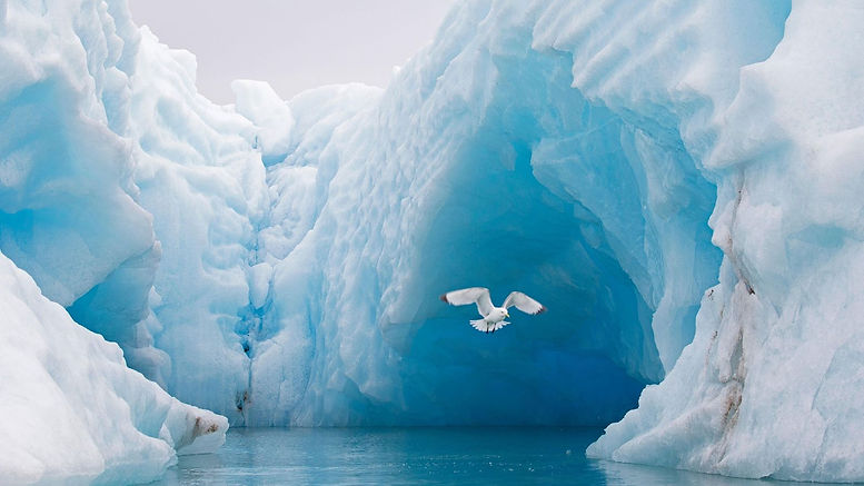 01_arctic_ocean_kxwd6b.jpg