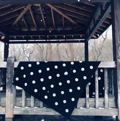 Polka Dots and Snowflakes