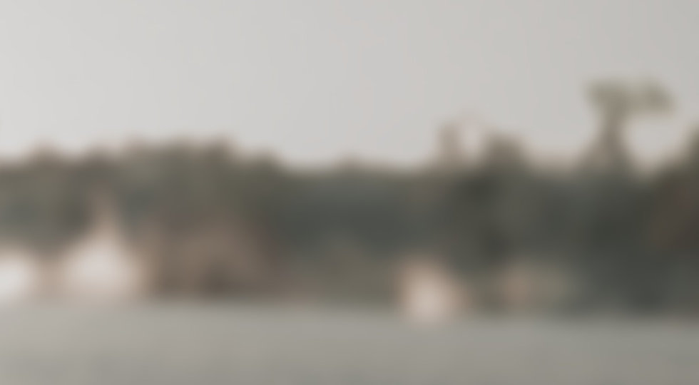 Blurred and zoomed in image of a person holding a recording camera