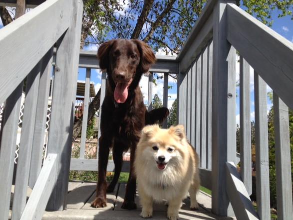 Prita and her buddy