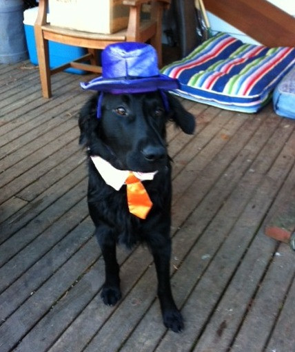 Hunter dressed for Halloween
