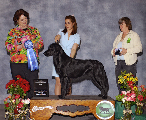 Ace gets first in class at the 2008 Specialty