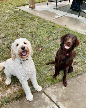 Grizzley with his good buddy Reggie!
