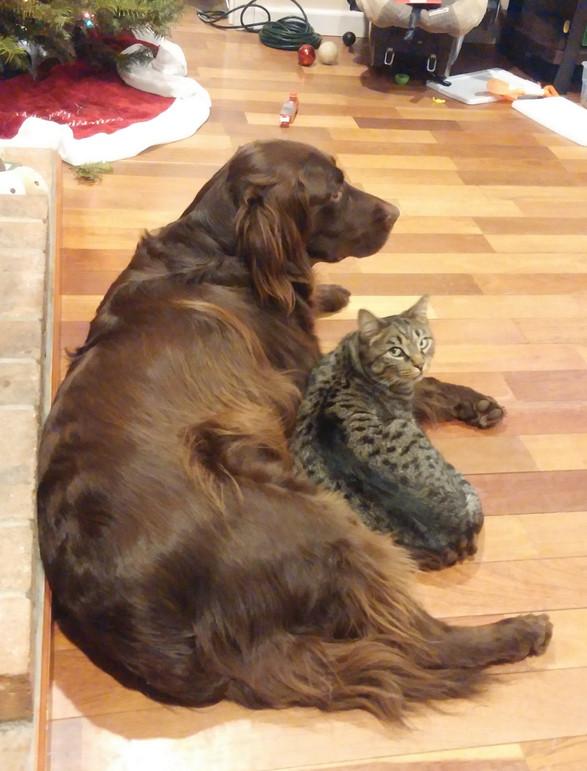 Nina with her pal