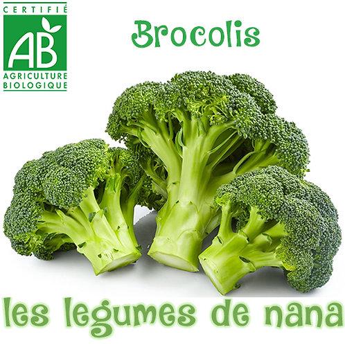 Brocolis bio (tête) env 600G