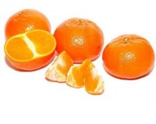 Mandarine ciaculli bio 1kg