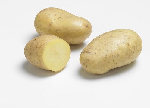 1 kg pdt Ditta (frite potage risolee )