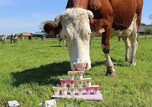 Lot de 4 yaourts de ferme