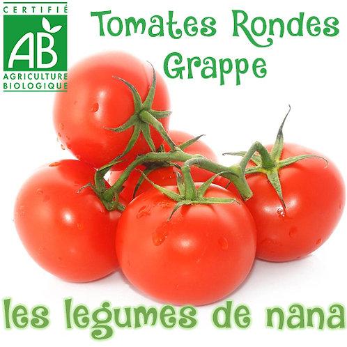 Tomates ronde  bio