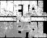 M4N_logo1_wb.png