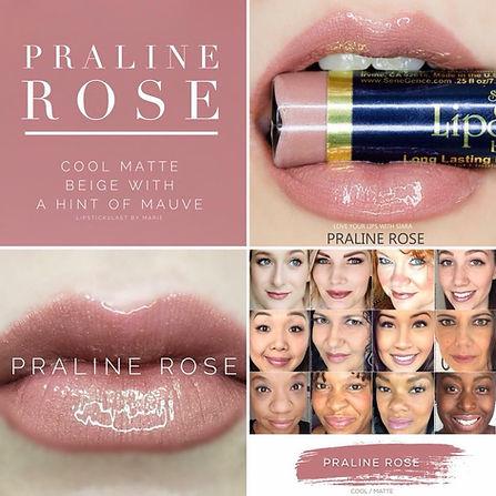 Praline Rose LipSense - Independent Distributor of SheerSense - LipSense - Senegence - SheerSense Opportunity