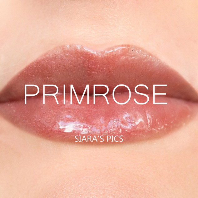 Primrose Gloss