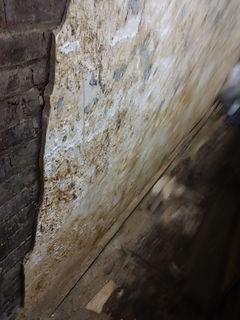 archyvas-siena3.jpg