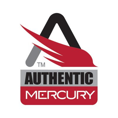 Marcury Security