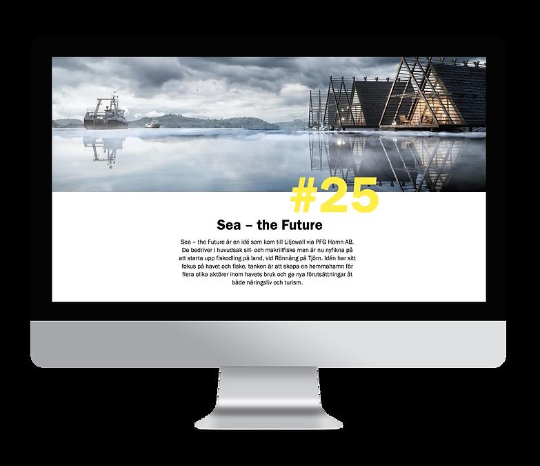 hemsida_sea_the_future.png