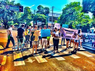 Março/2014 - Marcha da Defesa Animal, a segunda edição na cidade, organizada pelo Maringá Vegano