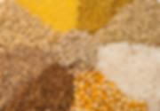 Grupo dos cereais (trigo, quinoa, arroz, aveia, centeio, quinoa, entre outros).