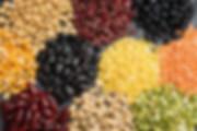 Grupo das leguminosas (feijões, grão-de-bico, ervilha, lentilha e soja).