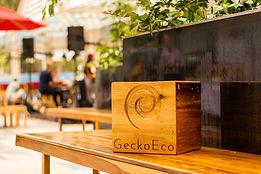 XP01GeckoEco_11.jpg