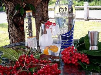 The Exiles Irish gin.