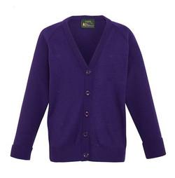 School Uniform Purple