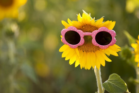 6 strong reasons to ensure your children wear sunglasses all year round