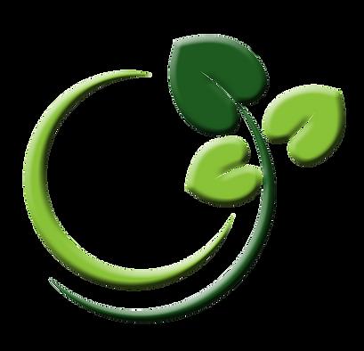 Copy of Origen Air Icon Logo (1).png