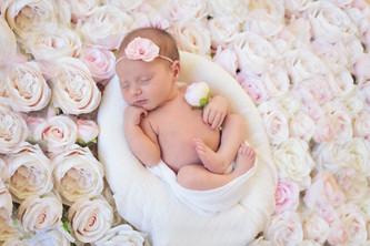 San Diego Newborn Photographer | Quinn