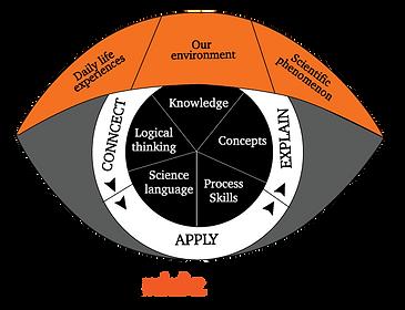 Vitamindz Science Framework