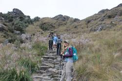 classic inca trail inka power