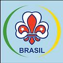 logo-brasil.PNG