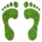 eco step