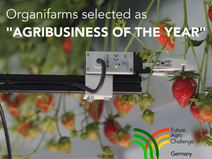 """Organifarms is Germany's """"Agribusiness of the year"""""""