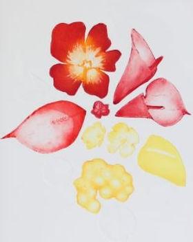 Atelier-Fany-Serigraphie-Gravure 3.JPG