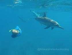 Makara and Dolphin