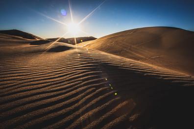 Dunes_October 16, 2020_017_.jpg