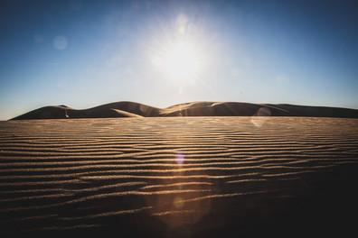 Dunes_October 16, 2020_008_.jpg