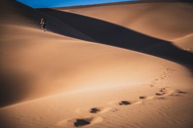 Dunes_October 16, 2020_005_.jpg