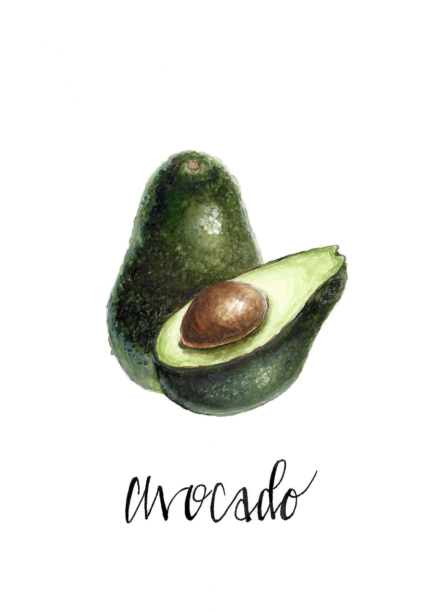 Fruit Series (Avocado)