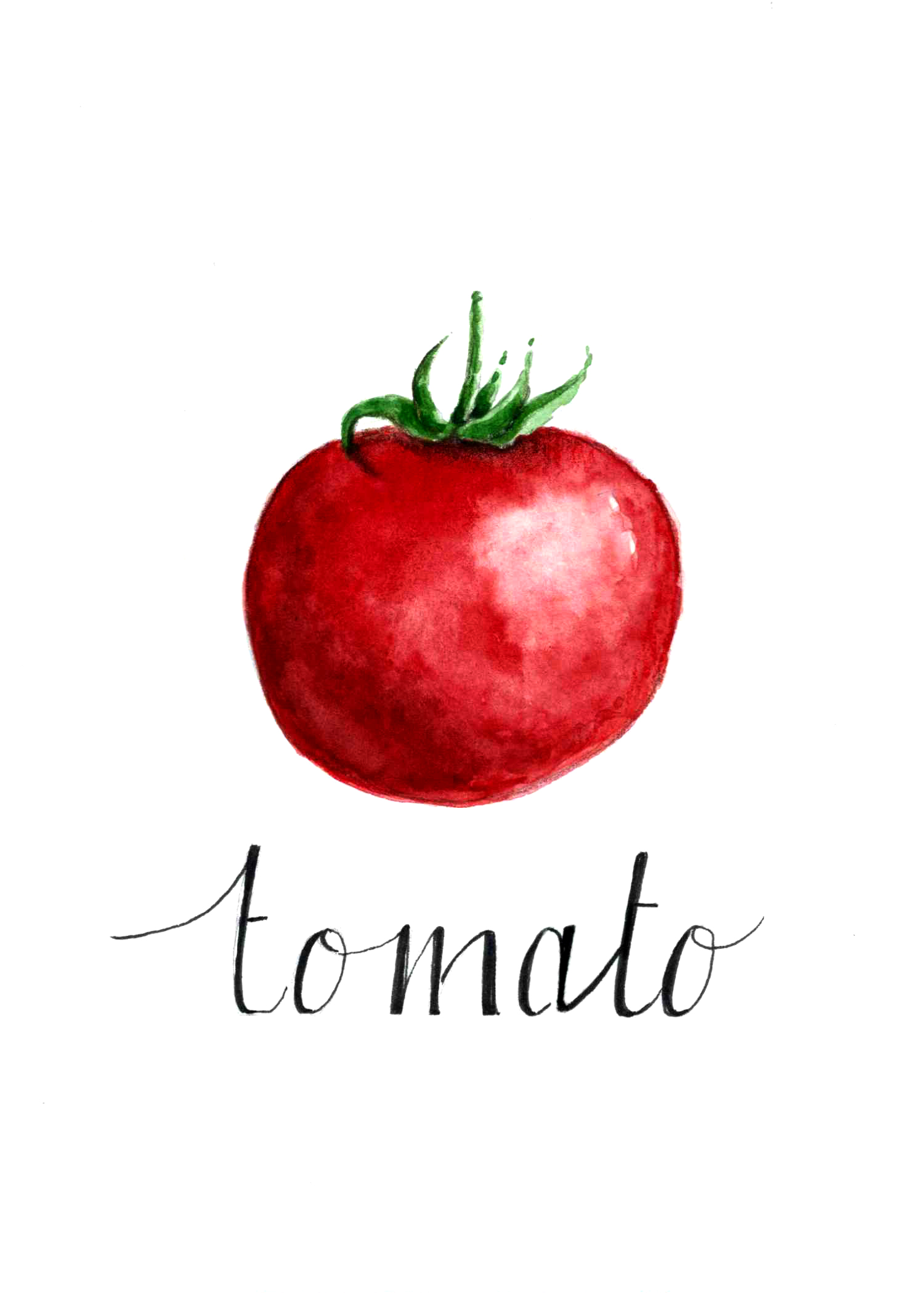 Veggie Series (Tomato)